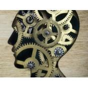 Μνήμη - Συγκέντρωση - Εγκέφαλος